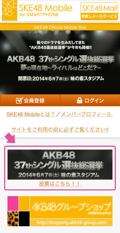 mobile_ske_01